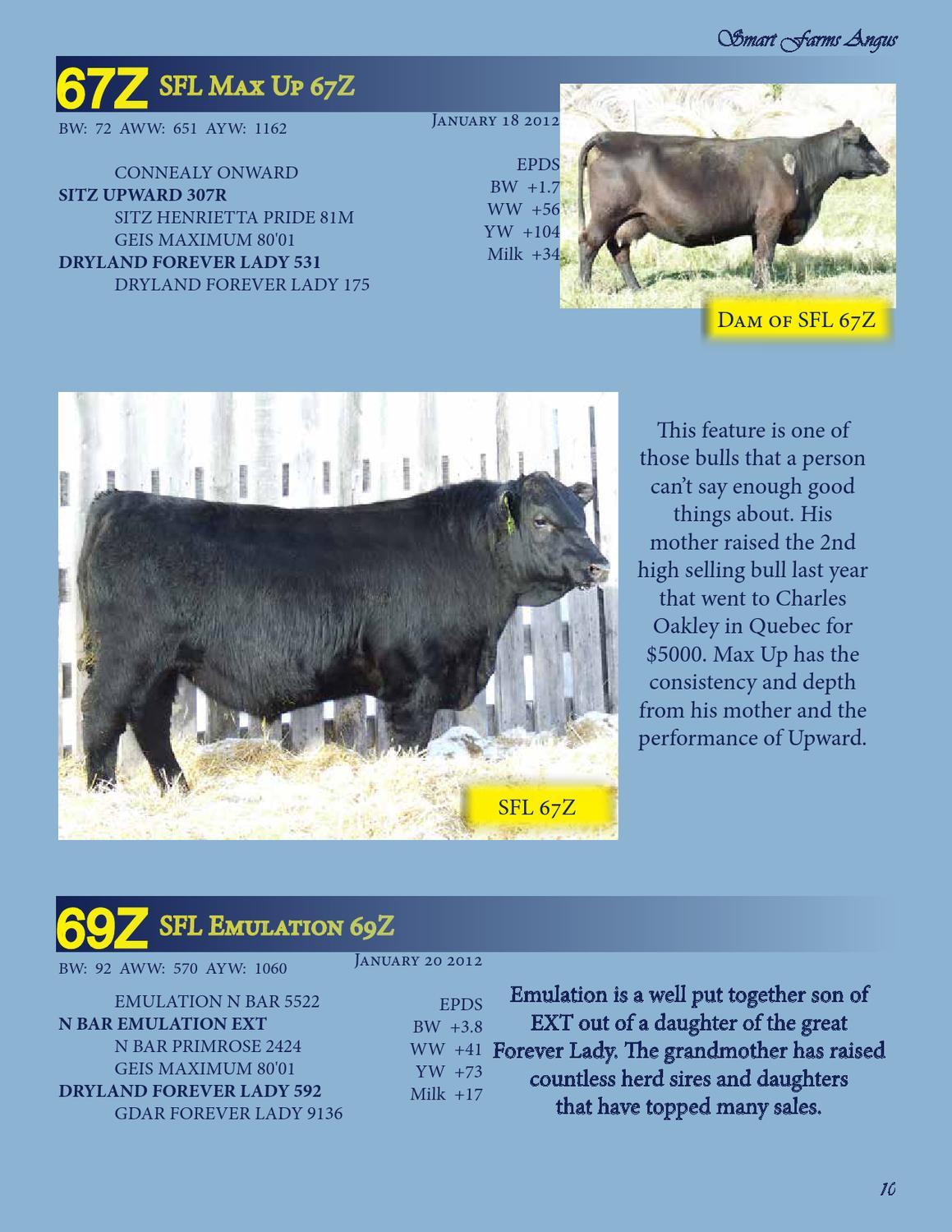 Working Stiff's Bull Sale 2013 by Everything Angus - issuu