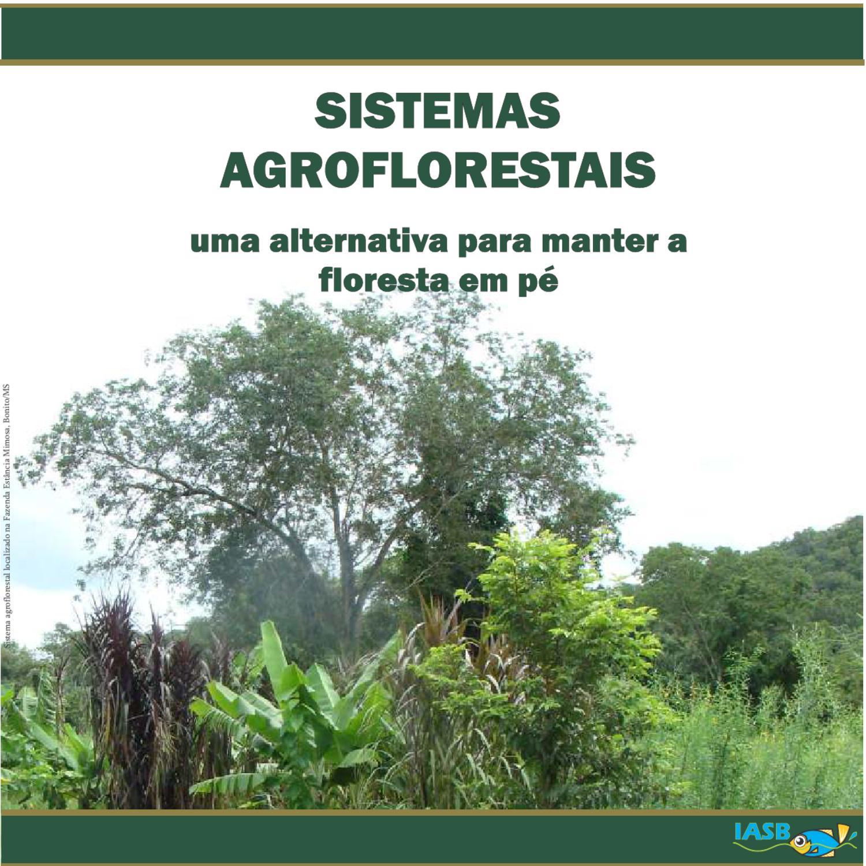 Sistemas Agroflorestais: uma alternativa para manter a floresta em pé by  IASB Serra da Bodoquena - issuu