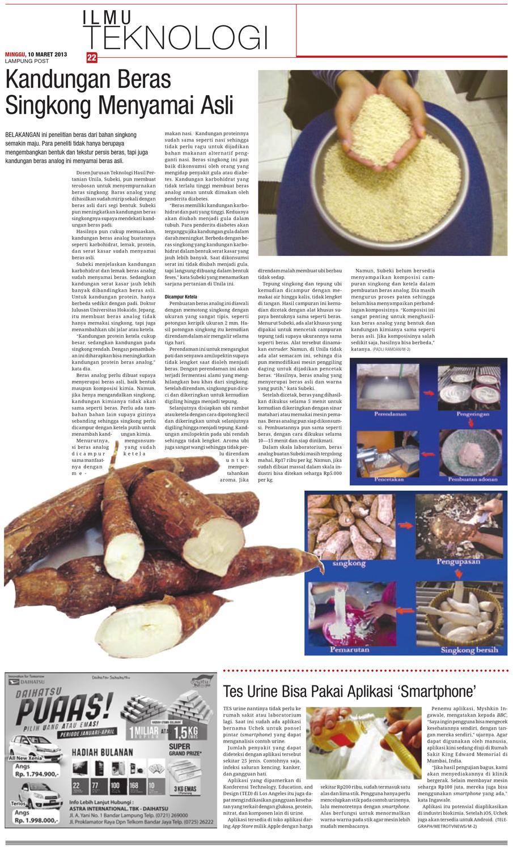 Lampungpost Edisi 10 Maret 2013 By Lampung Post Issuu Beras Analog