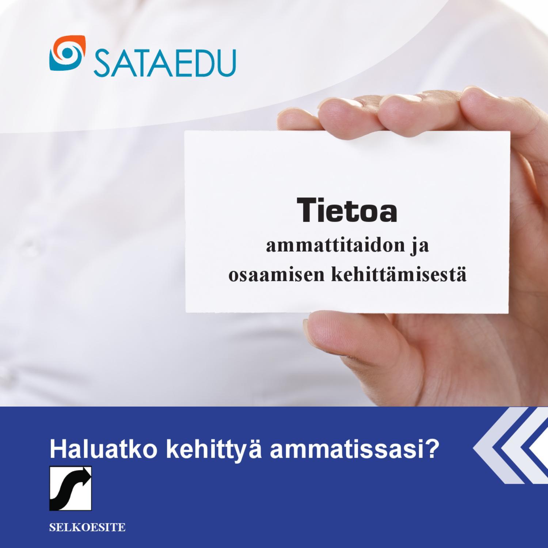 Sari Lammi-Aaltonen, Ammatinvalintapsykologi, Pori