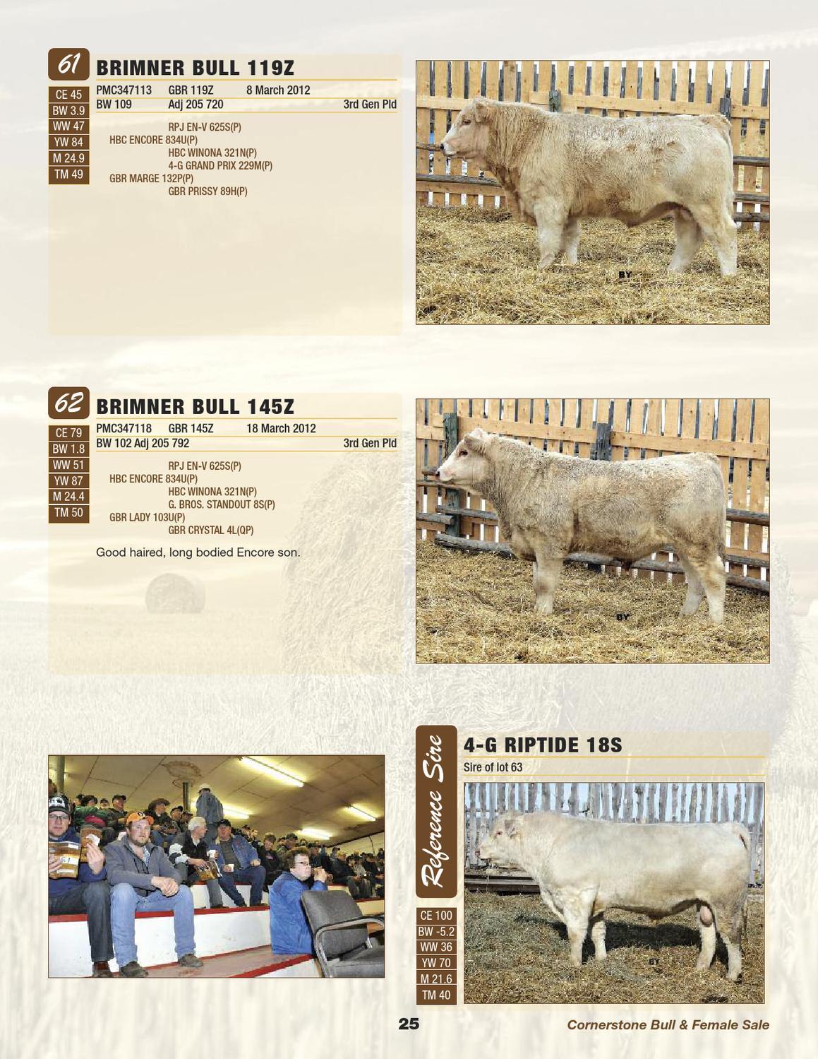 Cornerstone 2013 Bull Sale by Charolais Banner - issuu