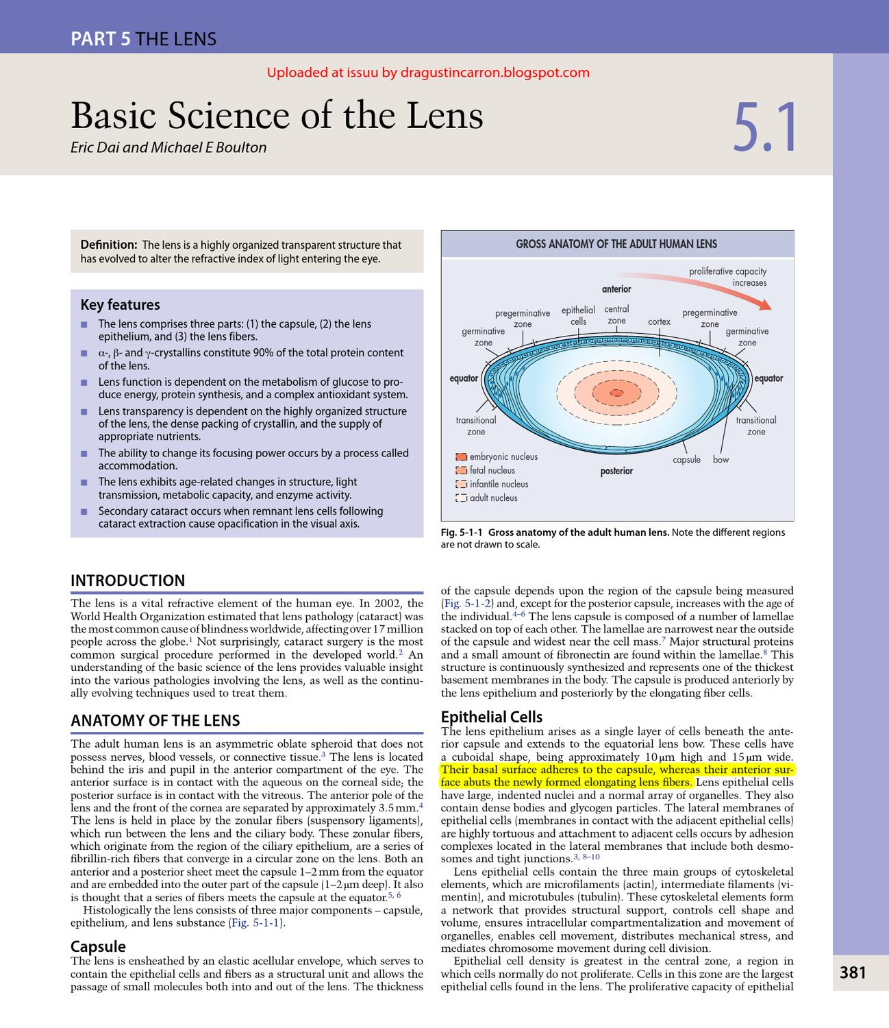 Chapter 5 from Yanof Ophthalmology. LENS by Agustin Carron - issuu