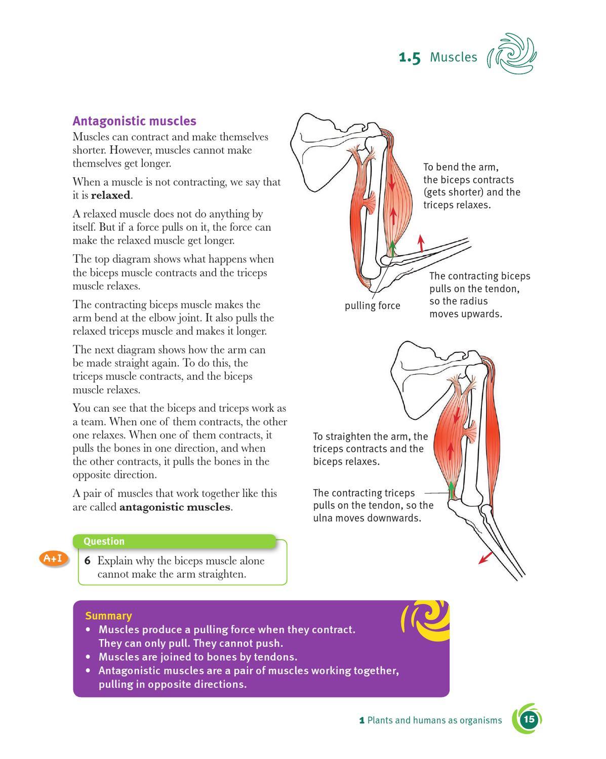 cambridge checkpoint science coursebook 7 by cambridge ... blazer idler arm diagram bent arm diagram