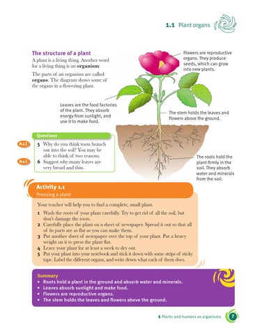 Cambridge checkpoint science coursebook 7 by cambridge university 11 the structure of a plant a plant is a living thing another word for a living thing is an organism the parts of an organism are called organs ccuart Image collections