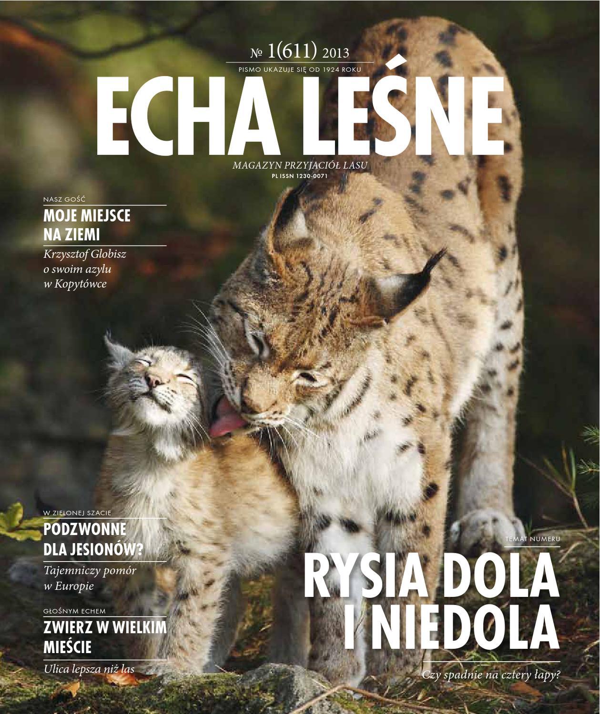 Echa Leśne Nr 1 611 2013 By Lasy Państwowe Issuu