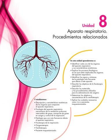anatomia del sistema respiratorio by Vivi Mendoza - issuu