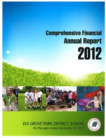 comprehensive annual financial report briefing Comprehensive annual financial report briefing: each year the state of nevada issues the comprehensive annual financial report (cafr) the most.