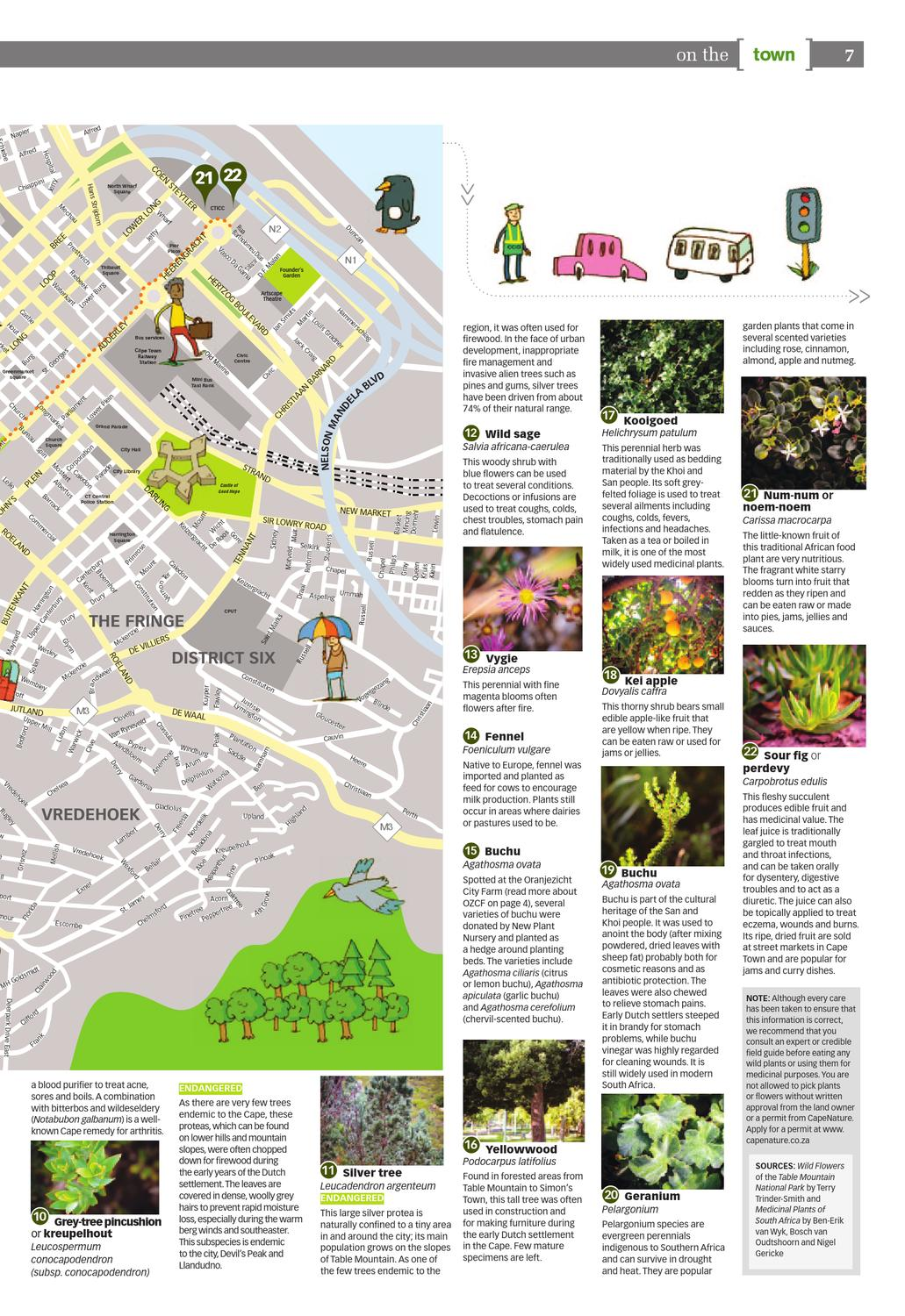 City Views: Cape Town as a biodiverse city by Cape Town Partnership