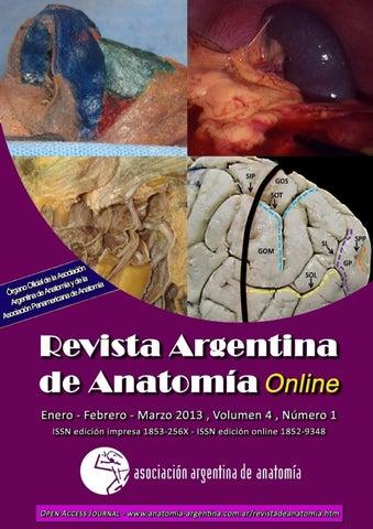 Revista Argentina de Anatomía Online 2013; 4(1):1-40 by Nicolas ...