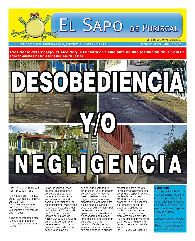 El Sapo de Puriscal Mayo Junio by Guy Tschiderer - issuu