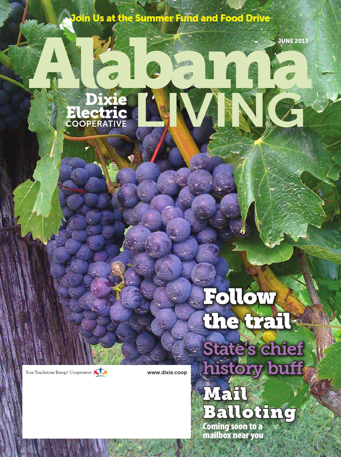Alabama Living Dixie June 2013 By American Mainstreet