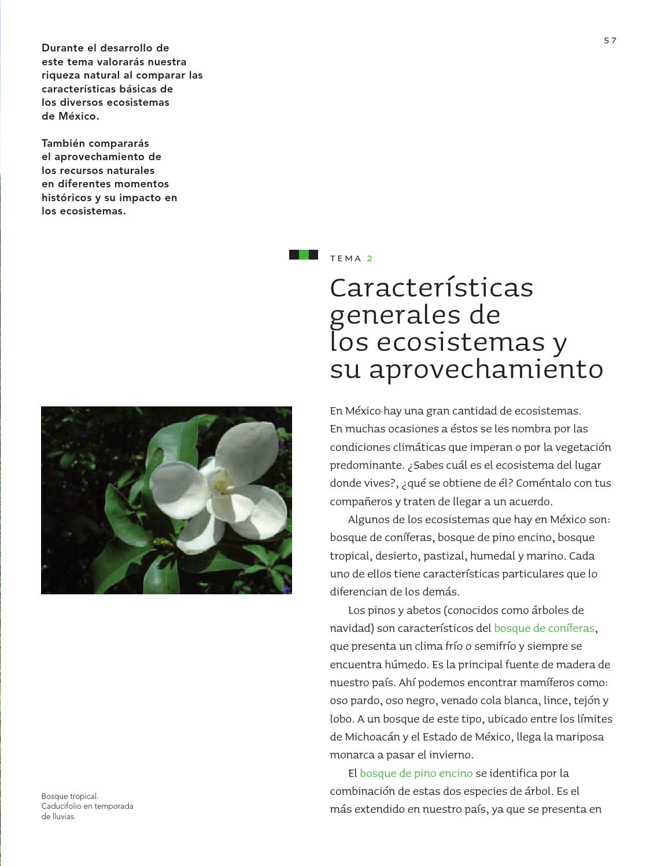 Ciencias Naturales 5o. Grado by Rarámuri - issuu