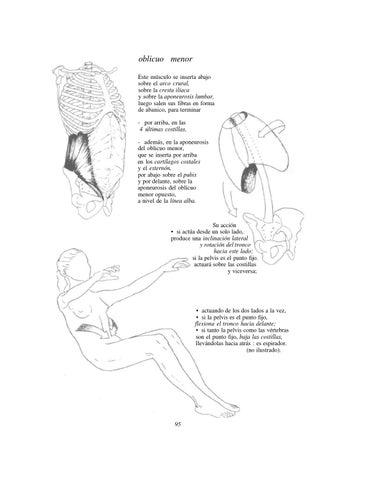 Anatomia para el movimiento(introduccion) parte 1 by Jonathan Alaves ...