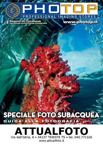Sigma 150 600 mm protezione contemporaneo in Neoprene Lens Copertina Ap Mimetico Premium