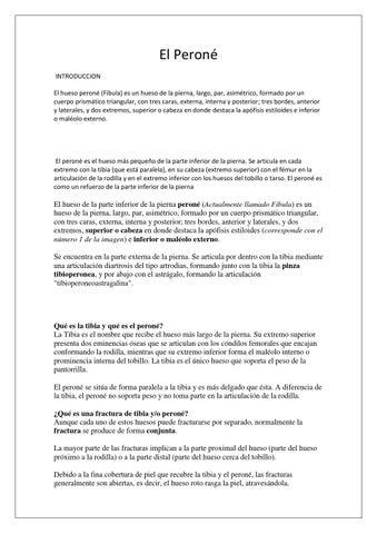 El hueso peroné by Valeria Chafla - issuu