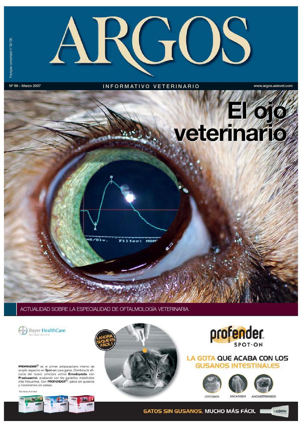 ojo veterinario by mariangeles diaz - issuu