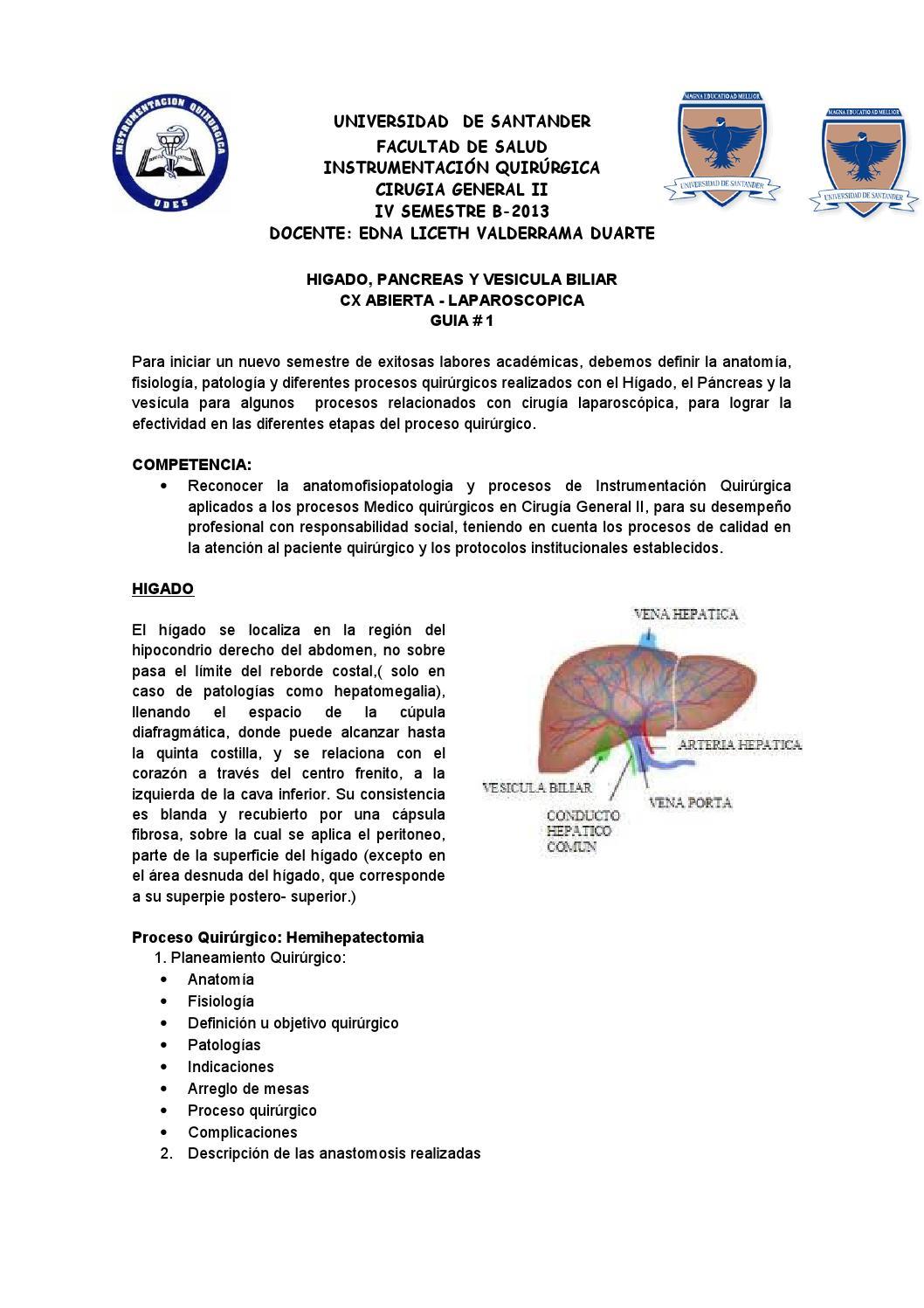 Guia 1: Hígado, Páncreas y Vesícula by Liceth - issuu