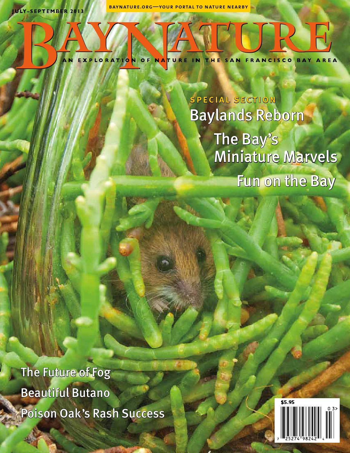 Bay Nature July-September 2013, Year of the Bay issue by Bay