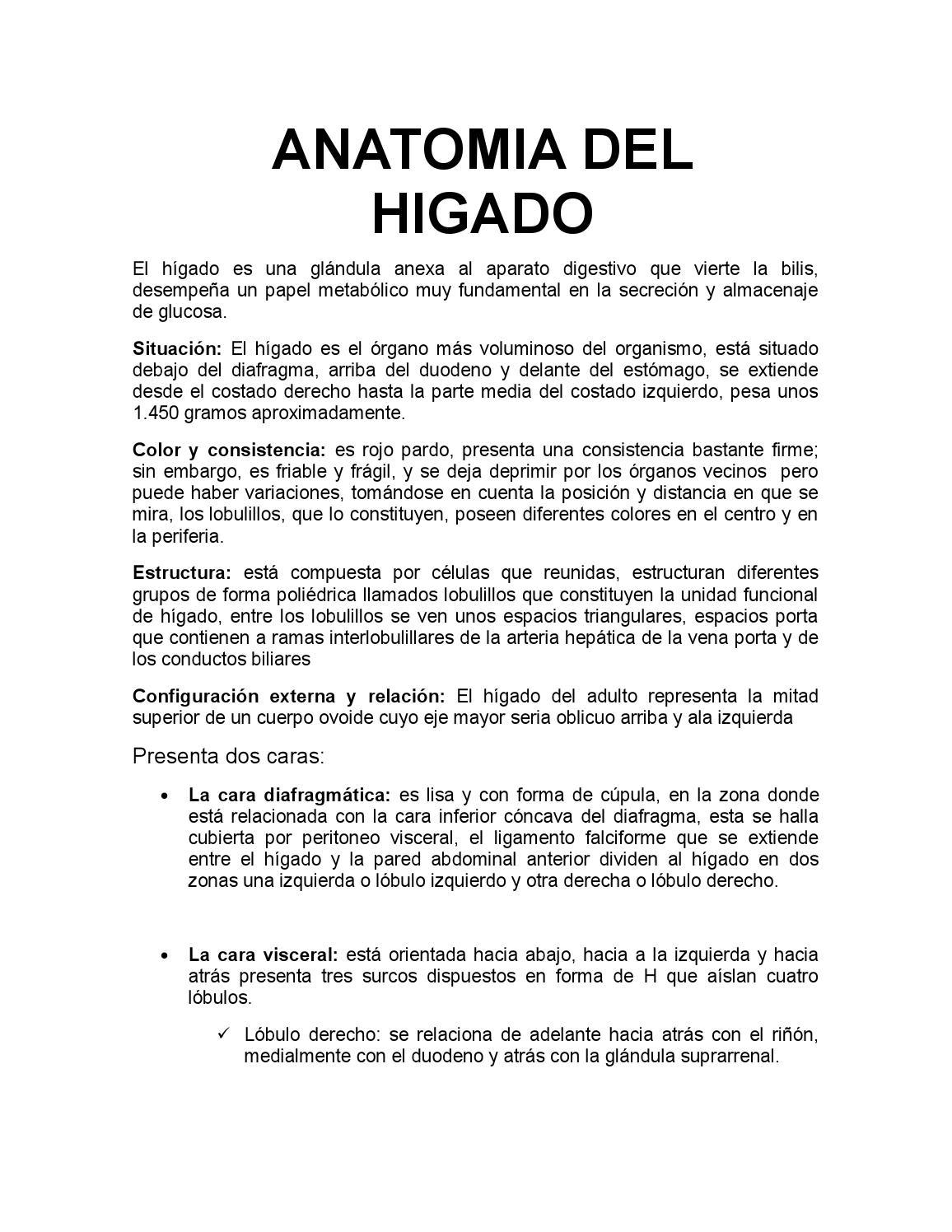 Trabajo de fisiologia by liseth - issuu