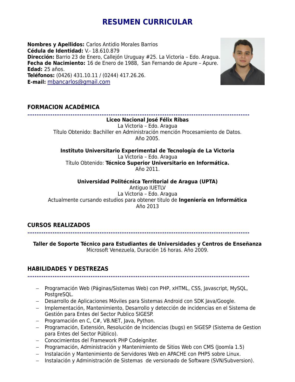 Atractivo Programador Resume La Sección De Habilidades Colección de ...