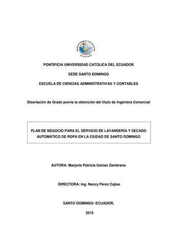 Plan de negocios para el servicio de lavander a y secado for Plan de negocios ejemplo pdf