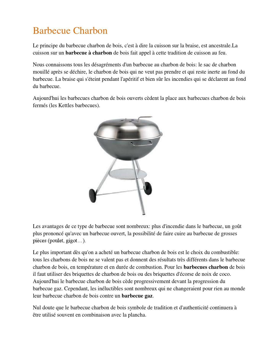 Barbecue & Co Feucherolles grand choix de barbecue plancha charbon à prix discount