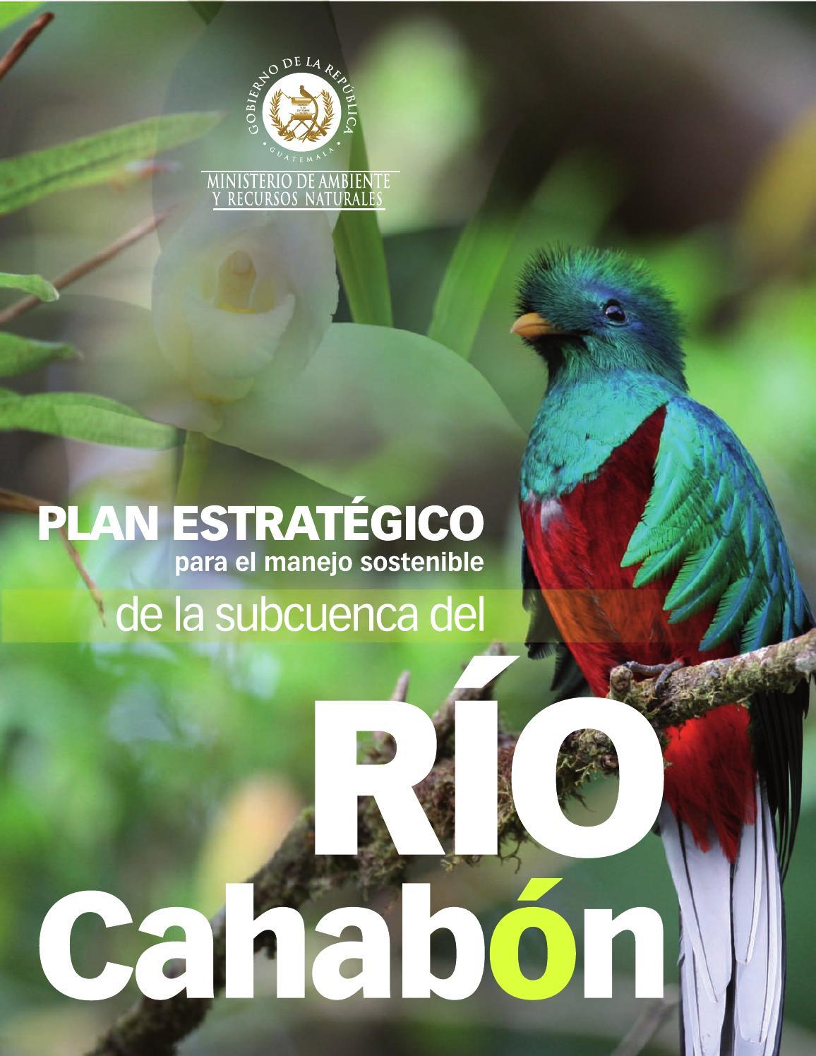 Salvemos Al Río Cahabón By Albertoandradem Issuu