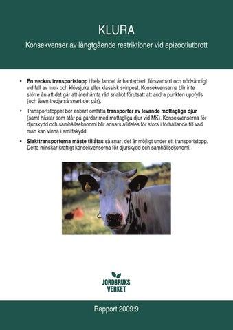Kor i smaland och blekinge kan ha blatunga