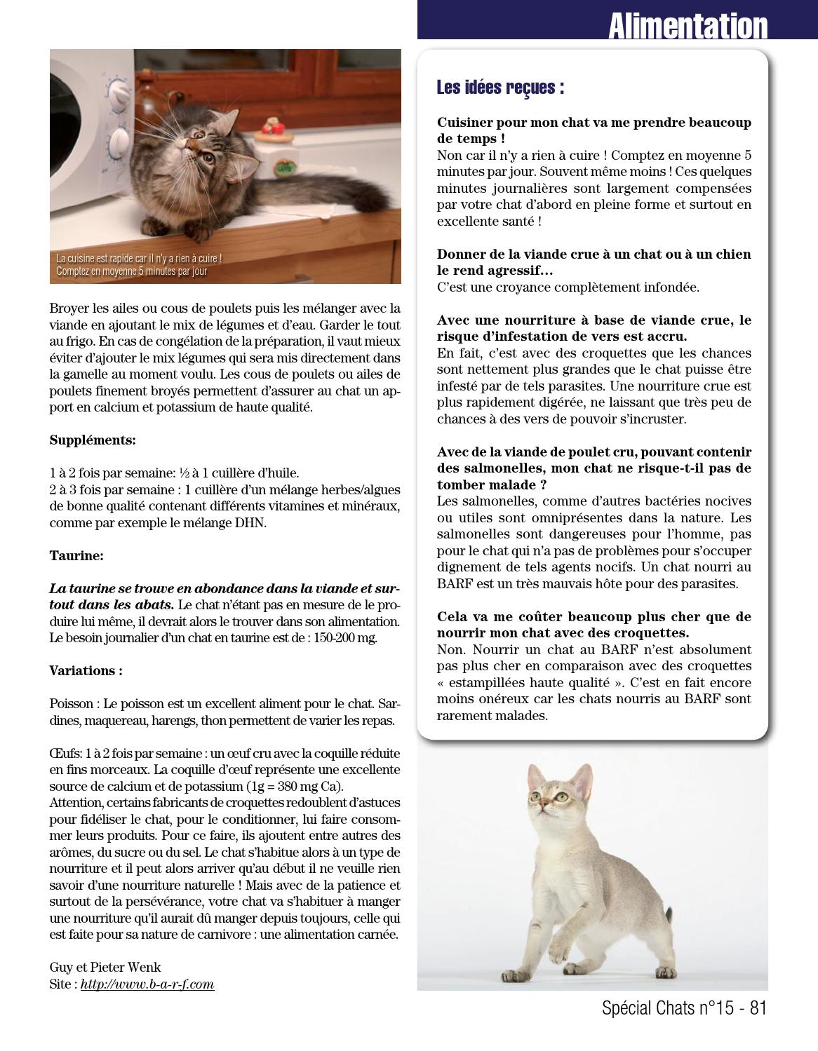 Special Chats 15 By Fabien Tourneur Issuu