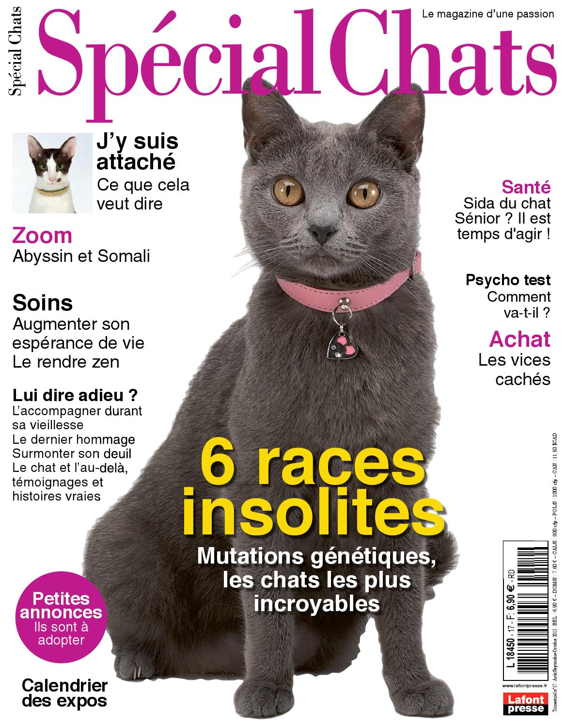 poilu chattes tube