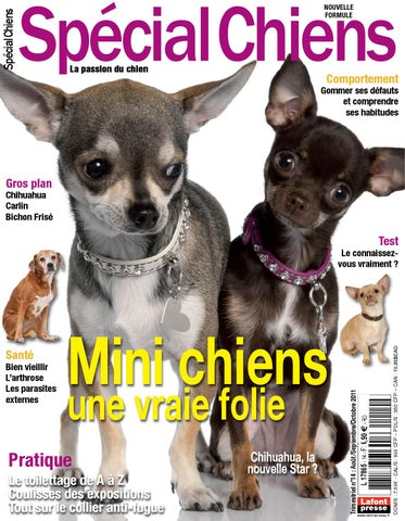 Windsor Impression – Fleur 6 chien zjlGG