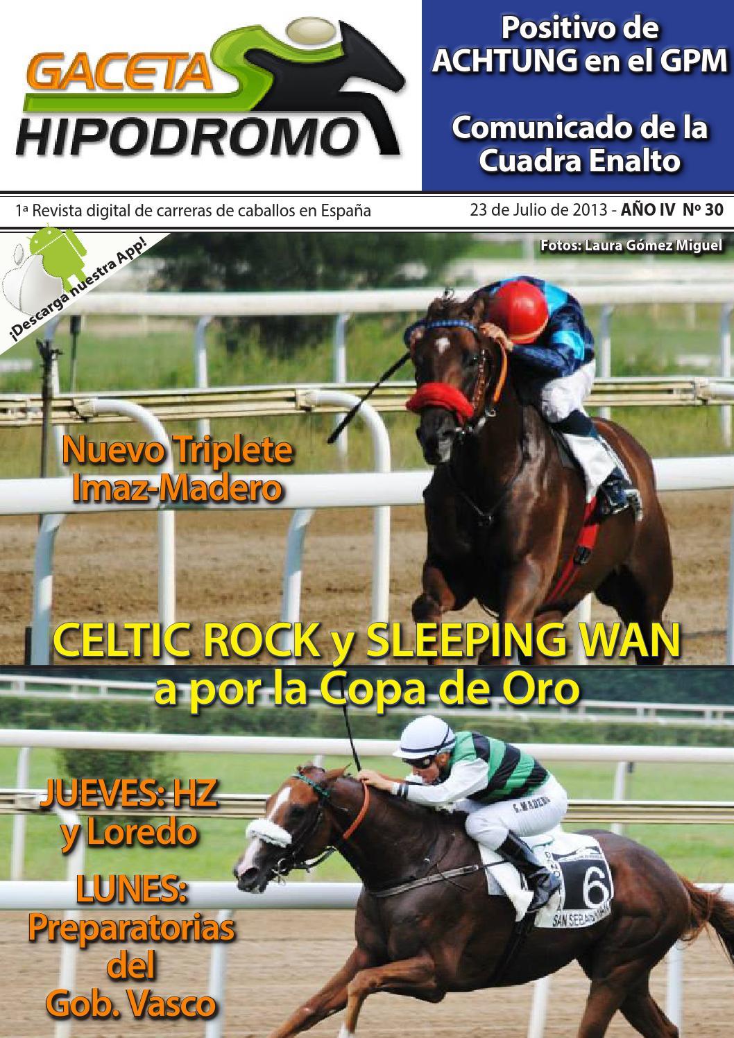 Gaceta Hipódromo Nº30 2013 (24/07-30/07)
