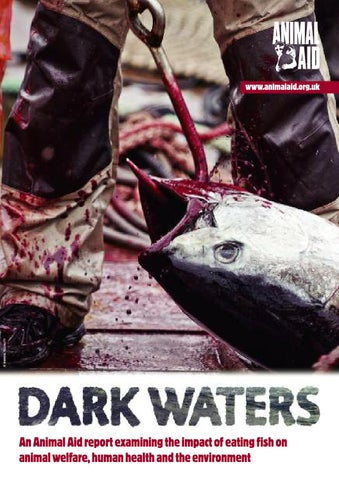 85afa683d3ded What s on Your Plate  by World Animal Protection Canada - issuu