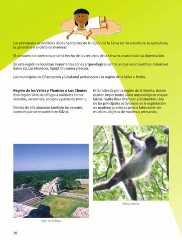Las principales actividades de los habitantes de la región de la Selva son  la apicultura 024f1e20541