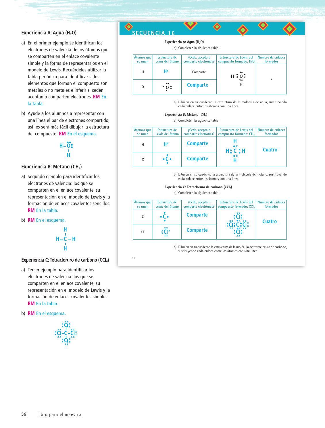 Maestro Ciencias 3er Grado Volumen Ii By Rarámuri Issuu
