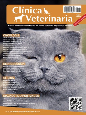 Clínica Veterinaria n. 104 by Revista Clínica Veterinária - issuu