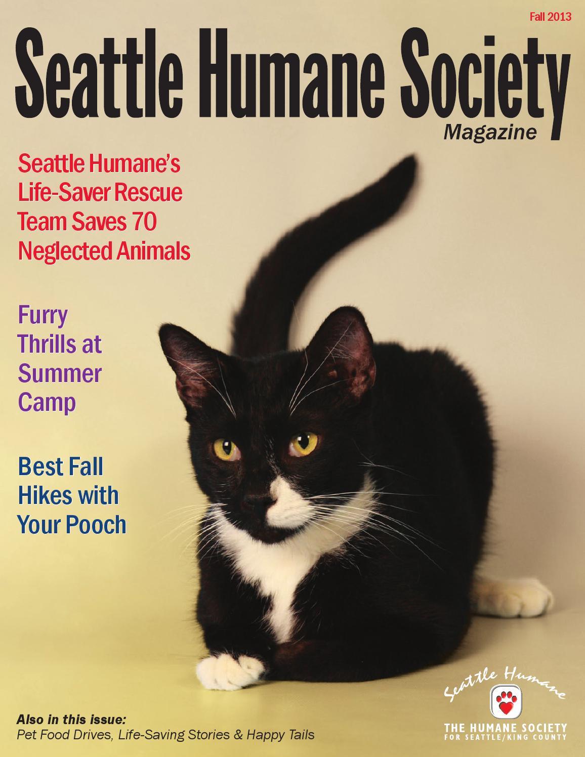 Seattle Humane Society Dog Training