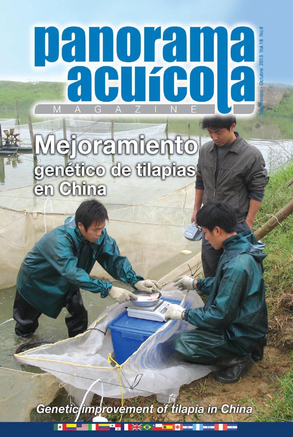 Panorama acuicola septiembre octubre vol 18 no 6 by for Tanques para cria de tilapia