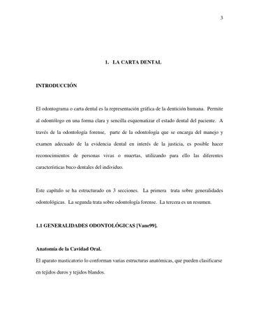 Nomenclatura anatomica dental by Laura - issuu