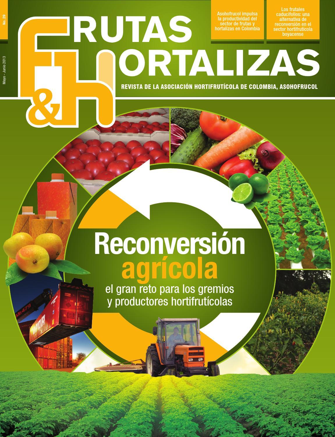 Frutas hortalizas edici n 29 by asohofrucol issuu for Asociacion de hortalizas
