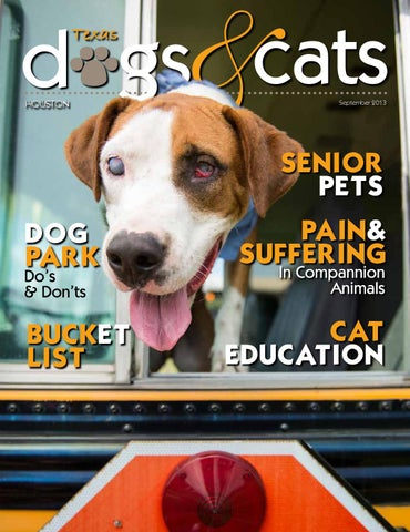 Texas Dogs & Cats Sept 2013 by 635 North Magazine - issuu