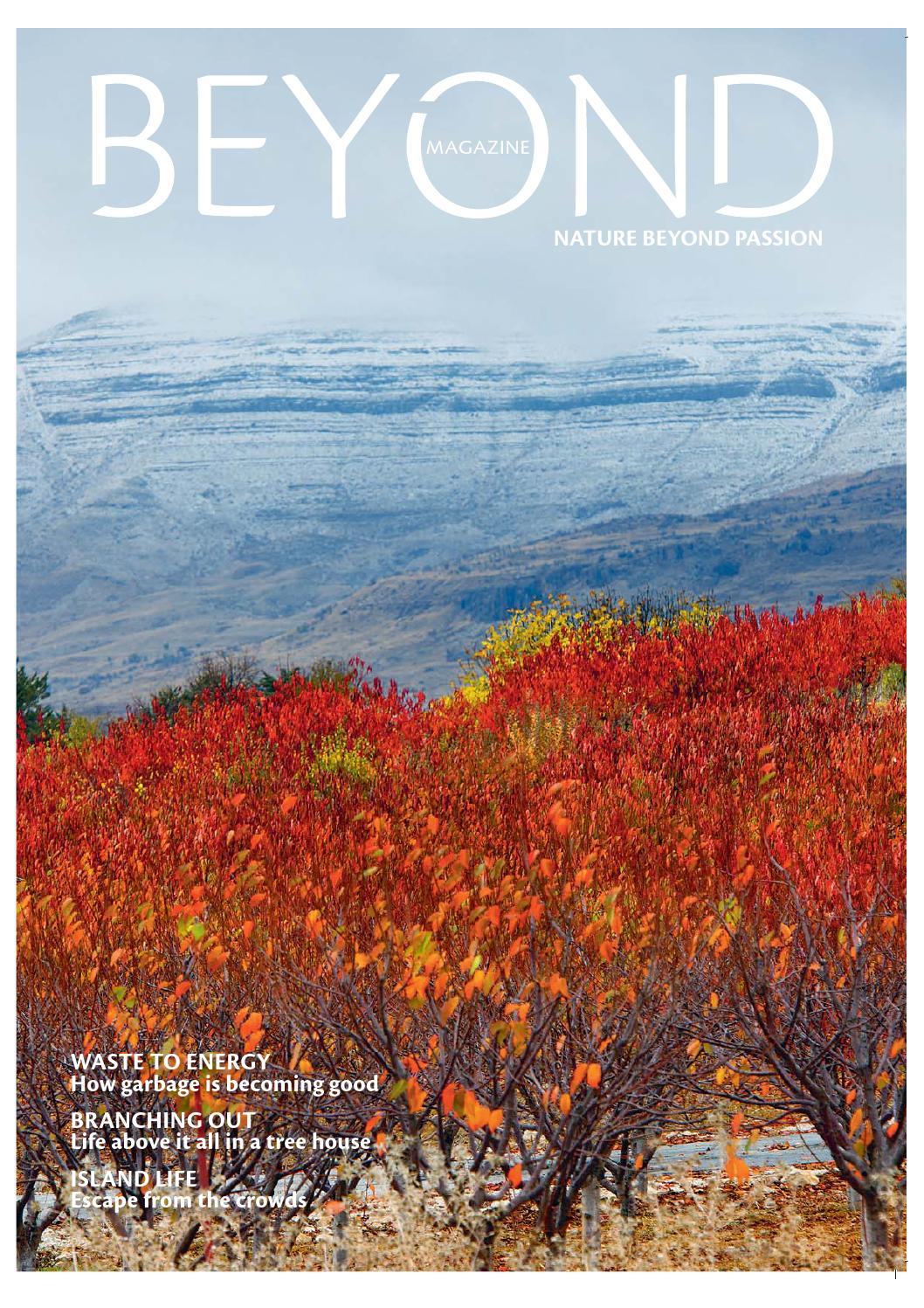 Beyond Magazine Issue 7 Winter 2012 by Beyond Magazine issuu