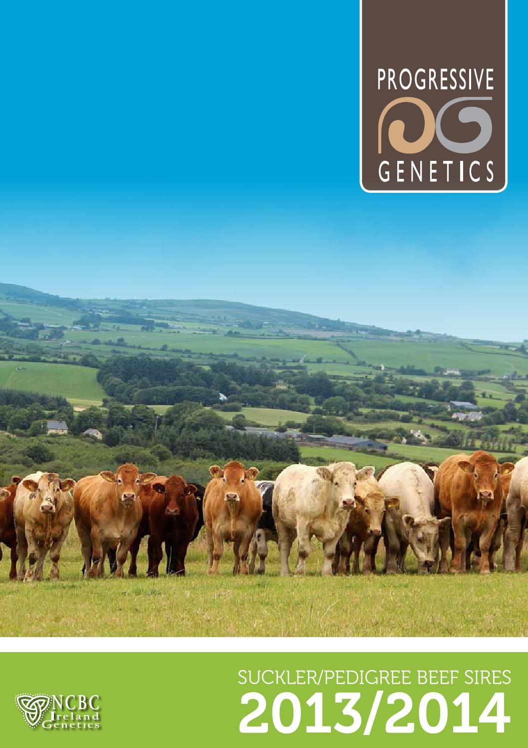 Pg beef sires 2013 14 by Larry Feeney - issuu