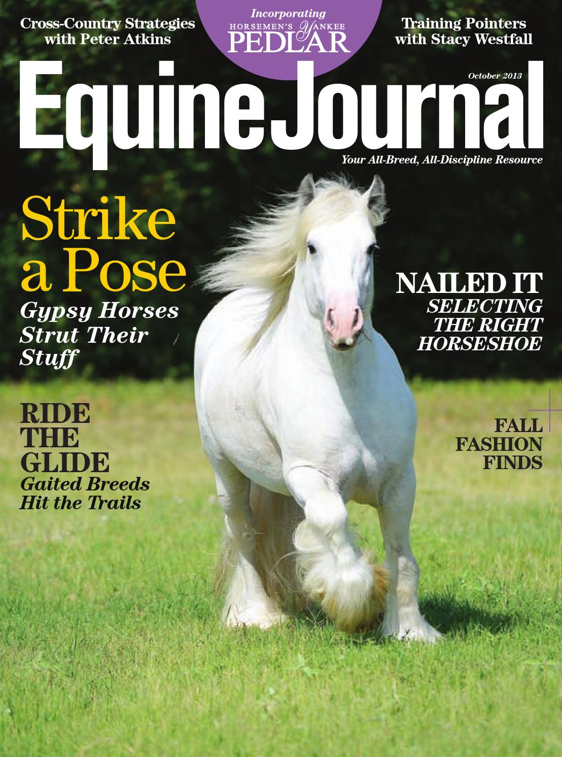 Equine Journal (October 2013) by Equine Journal - issuu