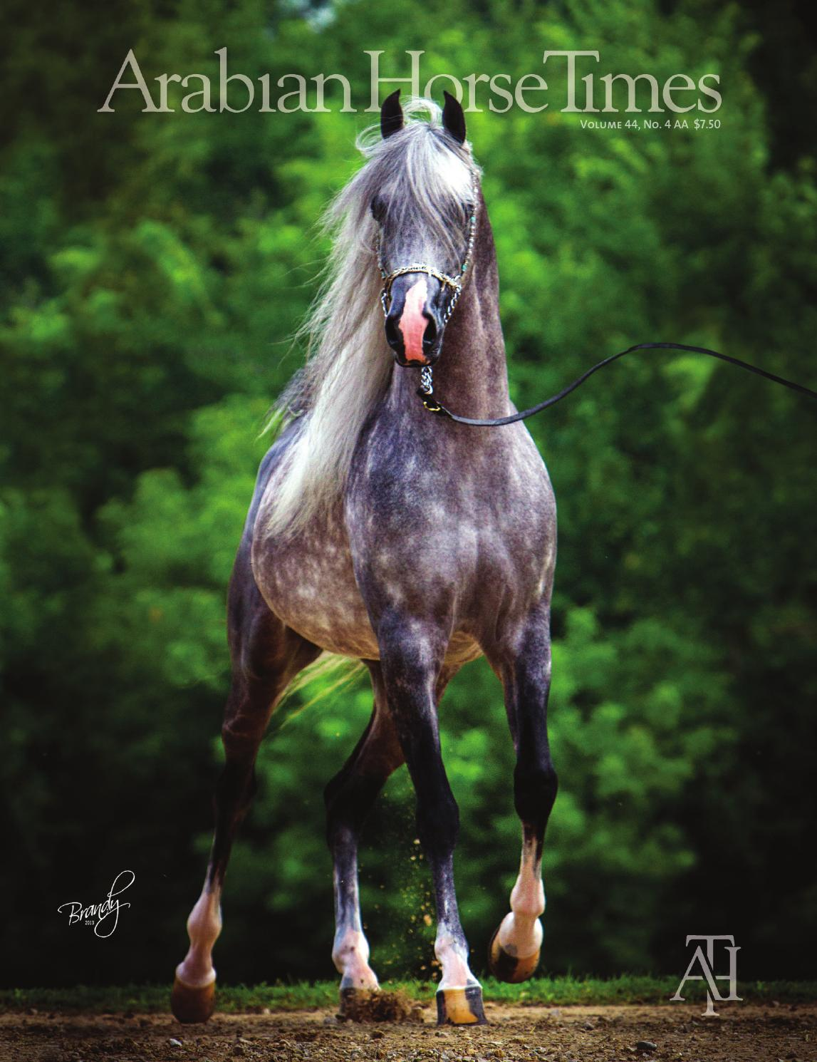 Vol44 No4AA - September 2013 by Arabian Horse Times - issuu