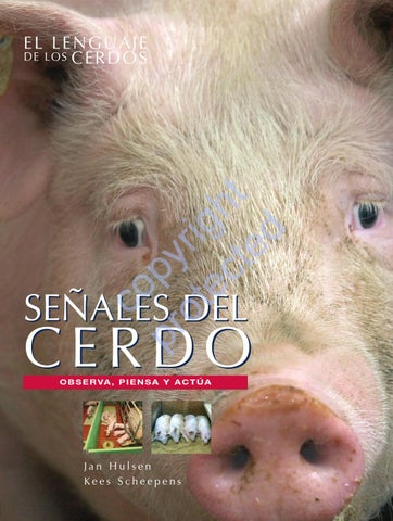 Pig signals - Spanish edition by Roodbont Publishers - issuu