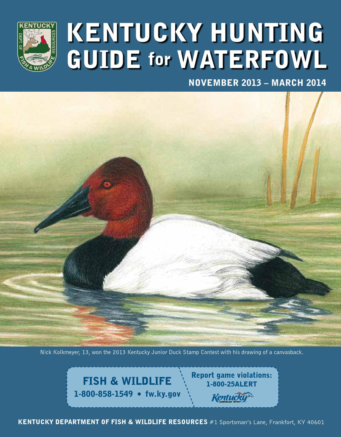 2013 14 ky waterfowl guide by kentucky department of fish for Ky fish and wildlife