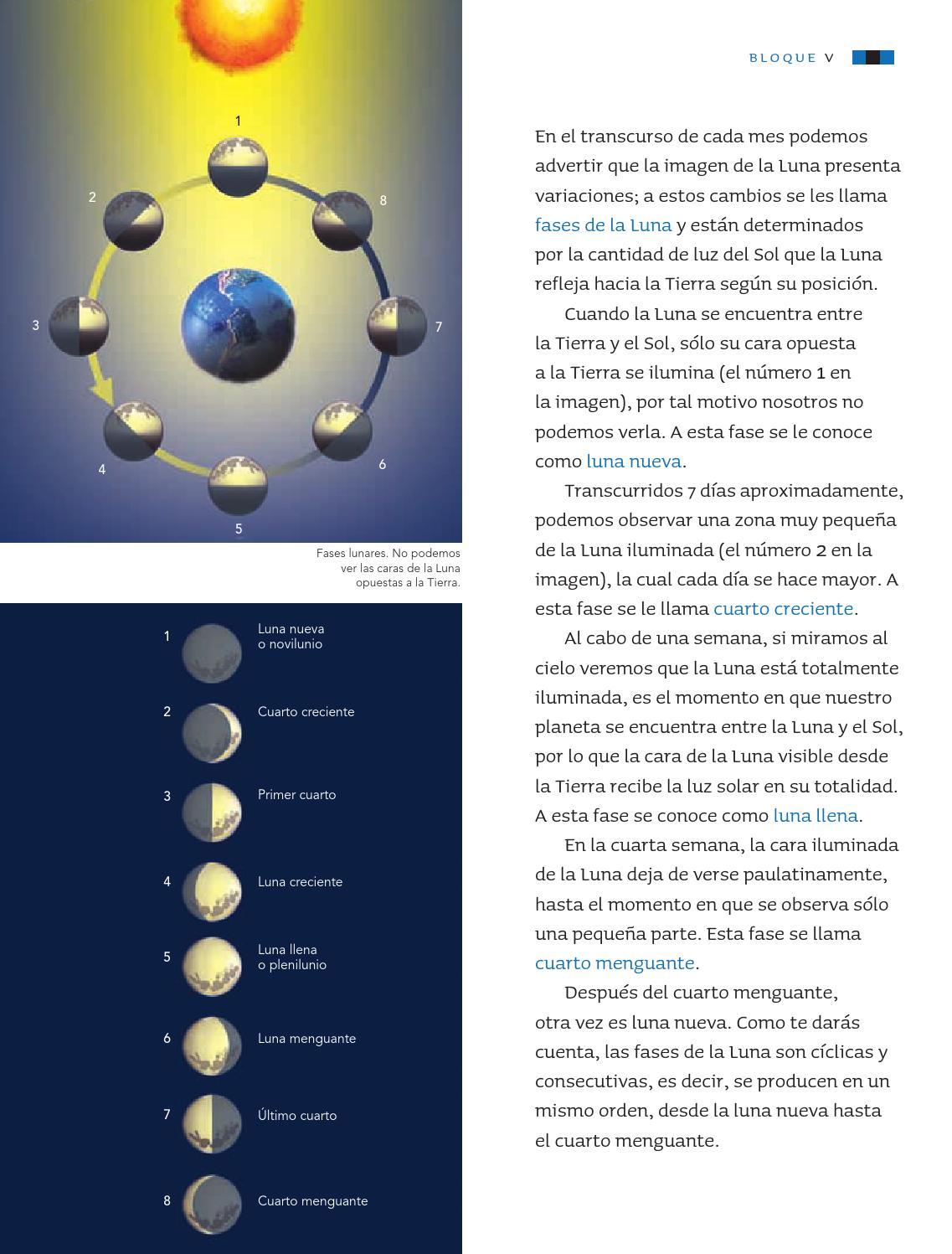Ciencias Naturales 3er. Grado by Rarámuri - issuu