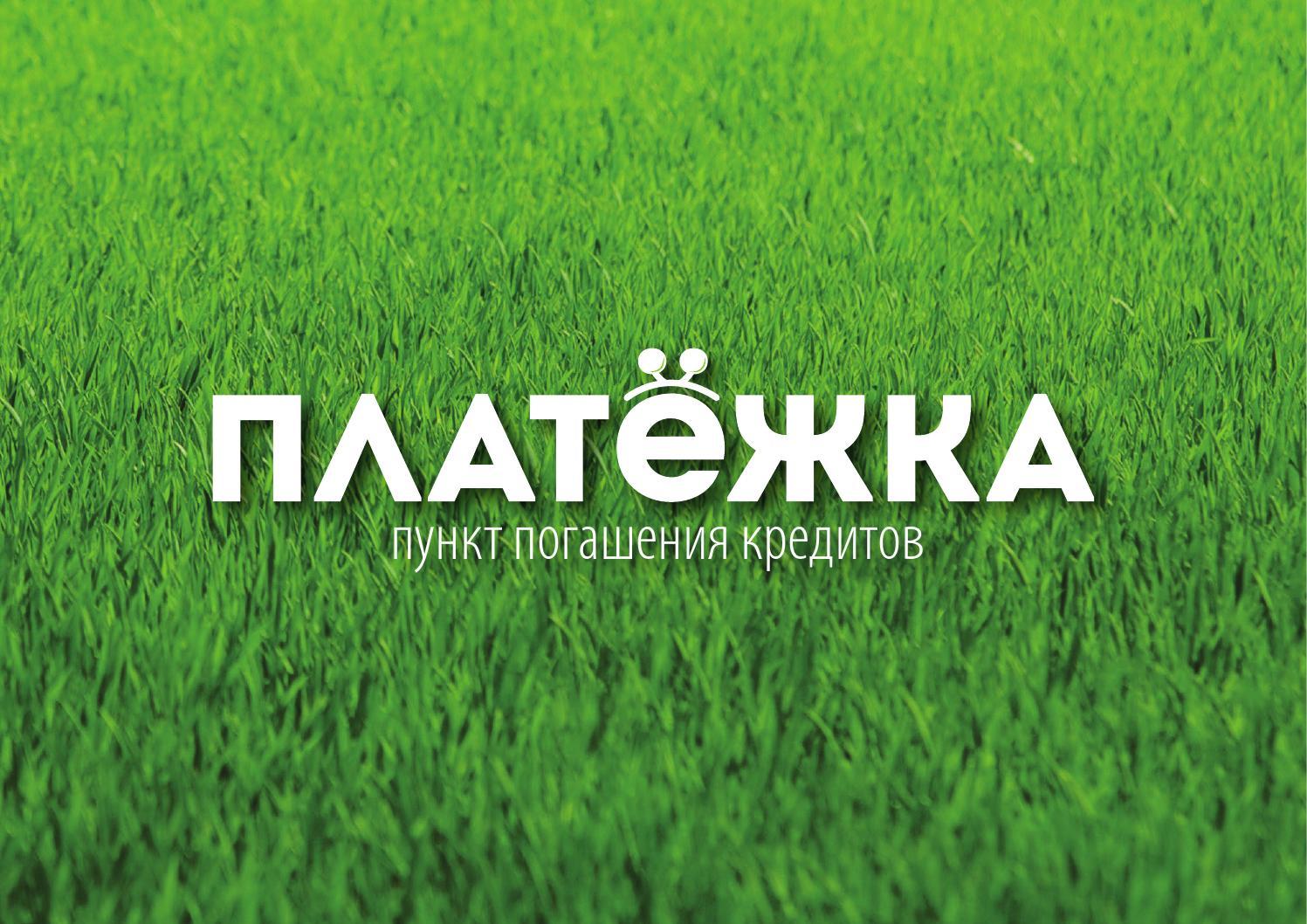 platezhka brand conception 1 by ruslan gashtov issuu. Black Bedroom Furniture Sets. Home Design Ideas