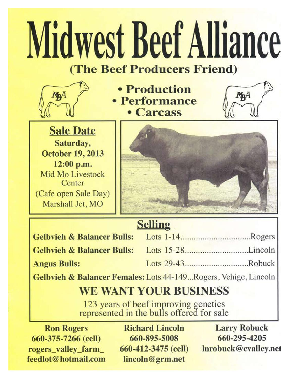 Midwest Beef Alliance by American Gelbvieh Association - issuu